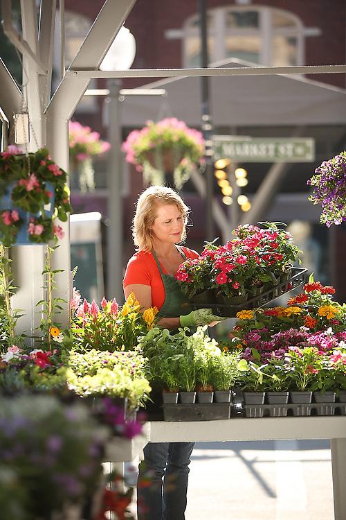 Roanoke City Market-Woman shopping at farmers market.