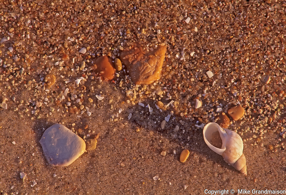 Shells and pebbles along the shore of Clearwater Road, Clearwater Provincial Park, Manitoba, Canada