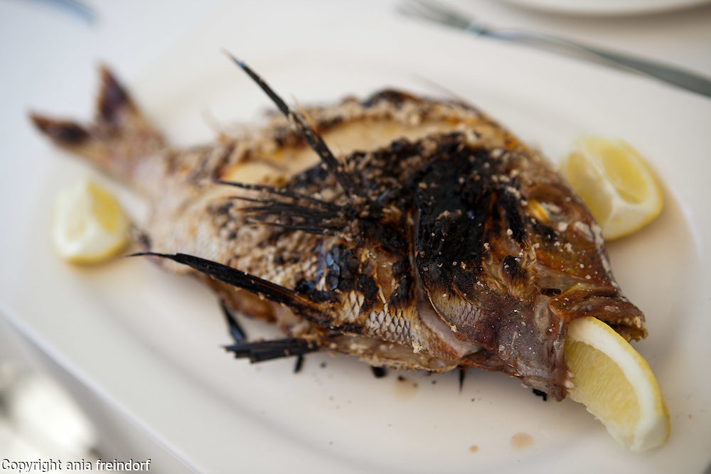 May in Malaga, Spain, Tourism, Red seabream, Urta fish, restaurant on the beach,