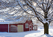 Idaho, Dalton Gardens. Coeur d' Alene. Sunrays peak through the trees above a red outbuilding in a snow covered landscape. . PLEASE CONTACT US FOR DIGITAL DOWNLOAD AND PRICING.