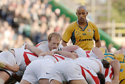 2005 Rugby, Investec Challenge, England vs Australia, Wallabies Skipper George Gregan, watches as Matt Dawson feeds the ball in to the scrum. RFU Twickenham, ENGLAND:     12.11.2005   © Peter Spurrier/Intersport Images - email images@intersport-images..