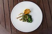 Grilled Halibut with salsa verde. Astor Grill