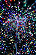 View of the inside of a Christmas tree made from lights in historic Marion Square in Charleston, South Carolina.