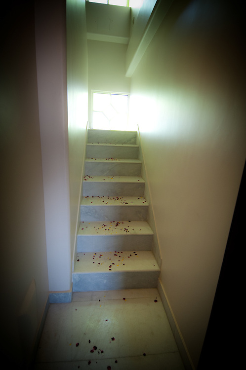 Rose petals on the stairs leading to the bedroom of a newly wed couple in India.