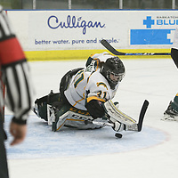3rd year goalie Jane Kish (31) of the Regina Cougars in action during the Women's Hockey home game on February 10 at Co-operators arena. Credit: Arthur Ward/Arthur Images