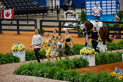 WILD Lisa (AUT), LUSCHIN Katharina (AUT), RIEGLER Magdalena (AUT), HRUZA Barbara (AUT), LUSCHIN Nikolaus (AUT), POLJC Leonie (AUT), Alessio L'Amabile<br /> Tryon - FEI World Equestrian Games™ 2018<br /> Team RC Wildegg<br /> Nations Team Vaulting Championship<br /> 19. September 2018<br /> © www.sportfotos-lafrentz.de/Stefan Lafrentz