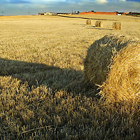 Bale of hay in the Spanish village of Morales del Vino, Zamora province, on July 22, 2001. Photo Rafa RIVAS