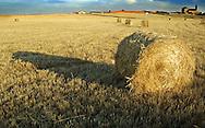 Bale of hay in the Spanish village of Morales del Vino, Zamora province, on July 22, 2001. Photo Rafa RIVAS