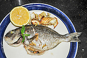 a plate with a Grilled fish with garlic and lemon