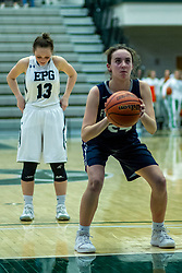 23 January 2020: Fieldcrest Knights v El Paso Gridley Titans girls during the 109th 2020 McLean County Tournament at Shirk Center in Bloomington IL<br /> <br /> Photo by Alan Look