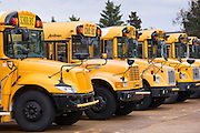 Traditional bright yellow school buses parked in a row, USA