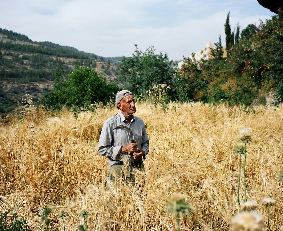 Fermier de Battir, où la source est partagée par les habitants du village. En 2011, Battir a reçu le prix Mélina Mercouri de l'UNESCO pour son agriculture en terrasses, patrimoine historique. Battir, ouest de Bethléem, Territoires Palestiniens, mai 2011
