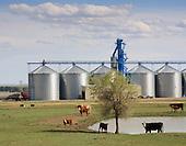 Landscapes of Northern USA. North Dakota, Montana, Wisconsin