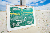Signage protecting a breeding colony of terns, De Mond Nature Reserve, Western Cape, South Africa