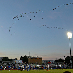 Staff photos by Tom Kelly IV<br /> A flock of geese fly over Academy Park High School during the game against Marple - Newtown on Friday night August 29, 2014.