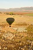 Bill Harrops Balloon Company
