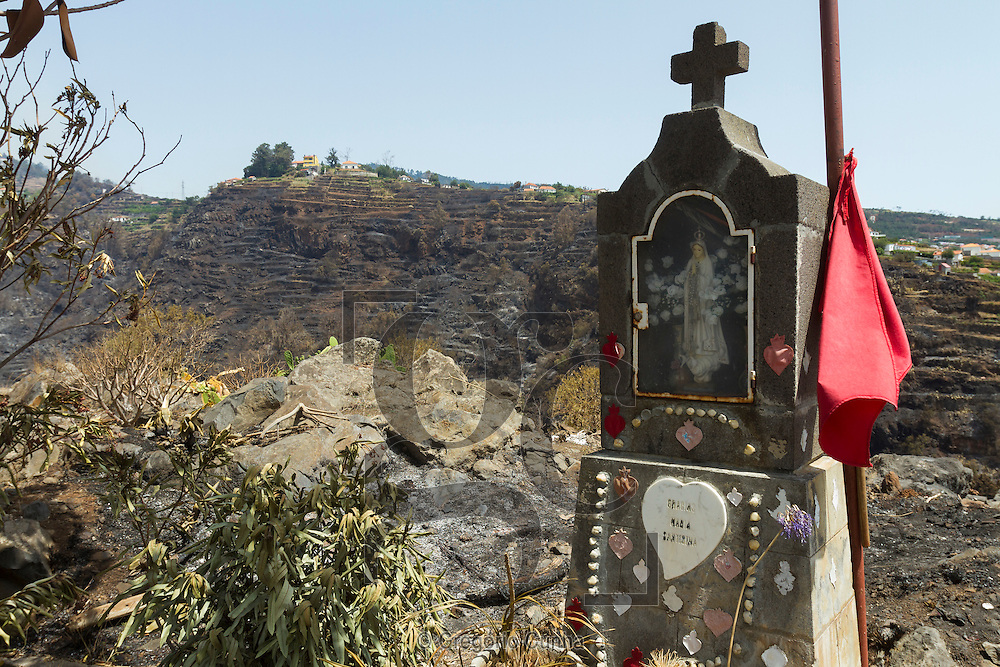 PORTUGAL, Gaula : A figure of the Virgin is pictured in a charred area after a wildfire in Gaula, on Madeira Island, on July 21, 2012. The problems started on July 18 evening when high temperatures and strong winds fanned a fire that broke out on the edge of the capital Funchal. PHOTO / GREGORIO CUNHA