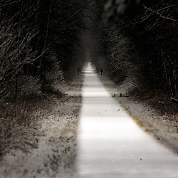 First snow on the Munger trail in Sandstone Minnesota. This trail was a railhead. It is now used as a snow mobile/bike trail.