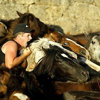 Rapa das Bestas, Spain.