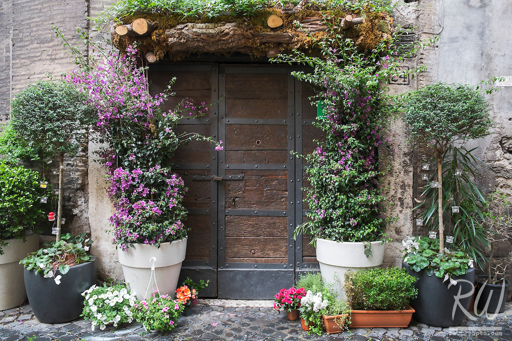 Jewish Ghetto Colorful Doorway With Flowers, Rome, Italy