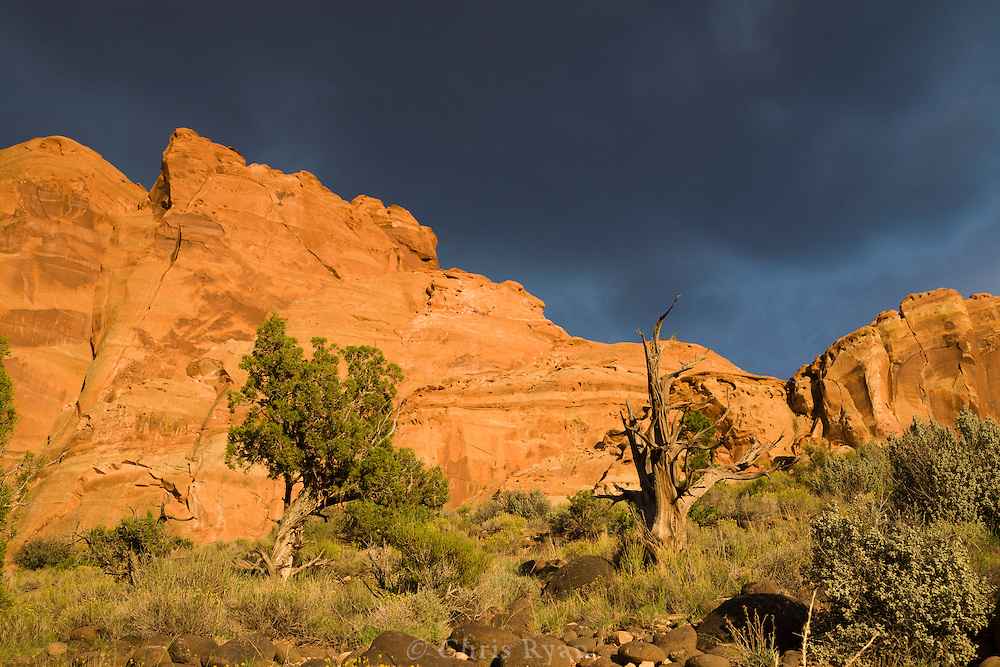 Desert cliffs lit by sunset beneath thunderclouds, Capitol Reef National Park, Utah