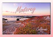MontereyPeninsula