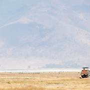 A safari vehicle on the plain of the Ngorongoro Crater in the Ngorongoro Conservation Area, part of Tanzania's northern circuit of national parks and nature preserves.