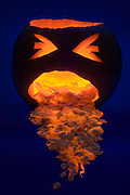 A pumpkin throws up its glowing guts.Black light