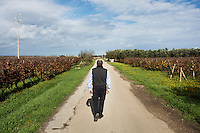 """GUAGNANO, ITALY - 10 NOVEMBER 2016: Gianvito Rizzo (53), inventor of the sommelier courses at Lecce prison and chief executive officer at the Feudi di Guagnano, the wine cellar that offered their wines for the classes, walks in the vineyard of Camarda of the wine house Feudi di San Guaganano, where the wine """"Le Camarde"""" is produced, in Guagnano near Lecce, Italy, on November 10th 2016.<br /> <br /> Here a group of ten high-security female inmates and aspiring sommeliers , some of which are married to mafia mobsters or have been convicted for criminal association (crimes carrying up to to decades of jail time), are taking a course of eight lessons to learn how to taste, choose and serve local wines.<br /> <br /> The classes are part of a wide-ranging educational program to teach inmates new professional skills, as well as help them develop a bond with the region they live in.<br /> <br /> Since the 1970s, Italian norms have been providing for reeducation and a personalized approach to detention. However, the lack of funds to rehabilitate inmates, alongside the chronic overcrowding of Italian prisons, have created a reality of thousands of incarcerated men and women with little to do all day long. Especially those with a serious criminal record, experts said, need dedicated therapy and professionals who can help them."""