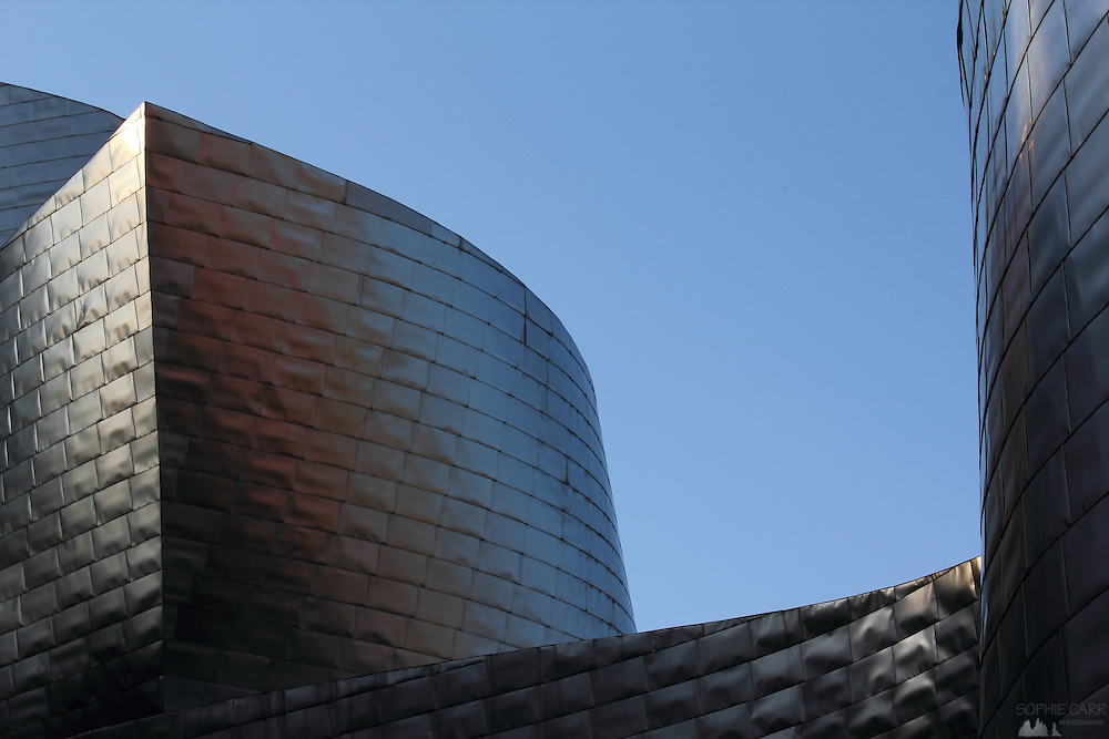 Detail from the titanium walls of the Guggenheim museum in Bilbao.