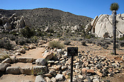 Ryan Mountain Trail at Joshua Tree National Park