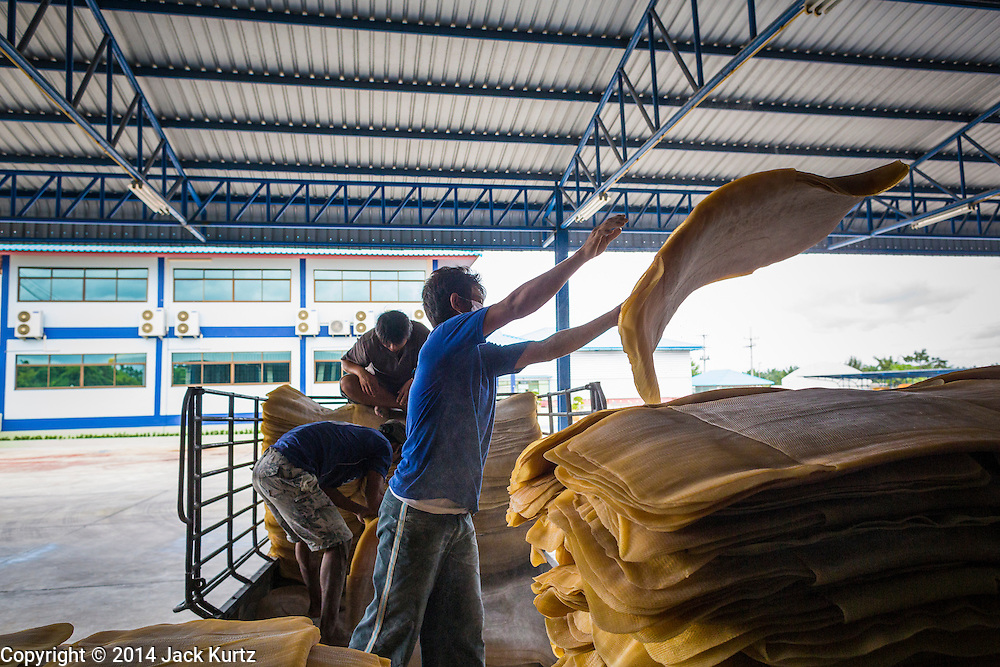02 SEPTEMBER 2014 - BO THONG, CHONBURI, THAILAND:  A worker at Bothong Rubber Fund Cooperative in Bo Thong, Chonburi, Thailand, unloads rubber sheets from a farmer's pickup truck. Thailand is the leading rubber exporter in the world. In the last two years, the price paid to rubber farmers has plunged from approximately 190 Baht per kilo (about $6.10 US) to 52 Baht per kilo (about $1.60 US). It costs about 65 Baht per kilo to produce rubber ($2.05 US). A rubber farmer in southern Thailand committed suicide over the weekend, allegedly because the low prices meant he couldn't provide for his family. Other rubber farmers have taken jobs in the construction trade or in Bangkok to provide for their families during the slump.   PHOTO BY JACK KURTZ