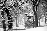 The Polish King during a blizzard in Central Park