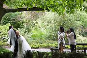 Een bruidspaar gaat op de foto.<br /> <br /> A just married couple is posing for the camera.