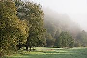 Morgenstimmung mit Nebel, bei Güttersbach, Mossautal, Odenwald, Naturpark Bergstraße-Odenwald, Hessen, Deutschland | landscape with fog, village near Güttersbach, Mossautal, Odenwald, Hesse, Germany