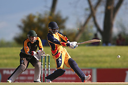 Nono Pongolo of Gauteng pulls a delivery through the leg side during the Africa T20 cup pool D match between Boland and Gauteng held at the Boland Park cricket ground in Paarl on the 25th September 2016.<br /> <br /> Photo by: Shaun Roy/ RealTime Images