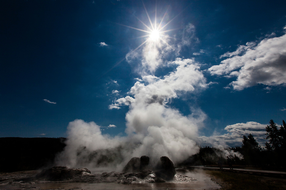 Grotto Geyser, Yellowstone National Park, Wyoming, United States