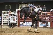 Bareback rider Cole Reiner rides his reride bronc during the Bismarck Rodeo on Saturday, Feb. 3, 2018. He had a score of 80 on the reride. More photos of each run are available at Bobwire-S.com.