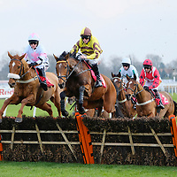 Kempton 13th January