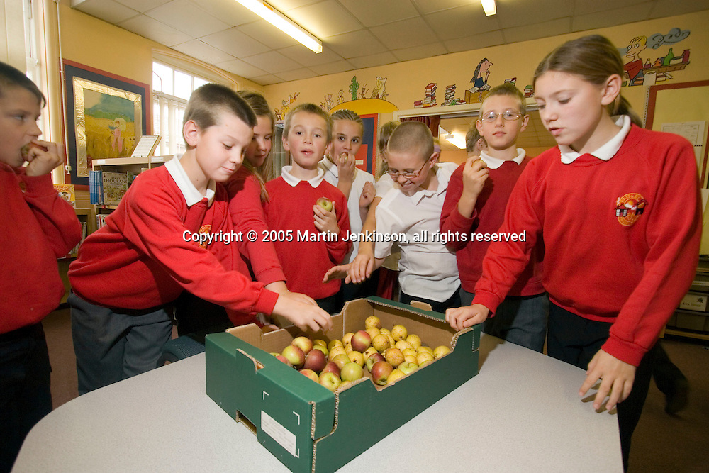 Pupils choosing a piece of fruit at break time, Paisley Primary School. Hull..© Martin Jenkinson, tel/fax 0114 258 6808 mobile 07831 189363 email martin@pressphotos.co.uk. Copyright Designs & Patents Act 1988, moral rights asserted credit required. No part of this photo to be stored, reproduced, manipulated or transmitted to third parties by any means without prior written permission