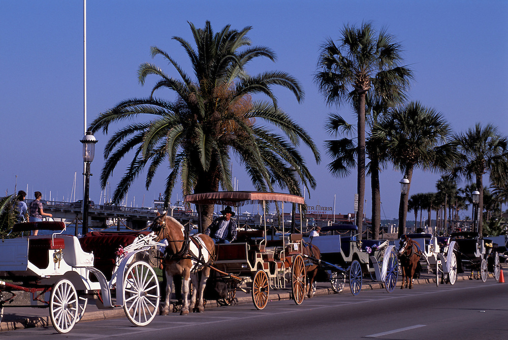 Horse drawn Carriages, San Marco Street, St. Augustine, Florida, USA