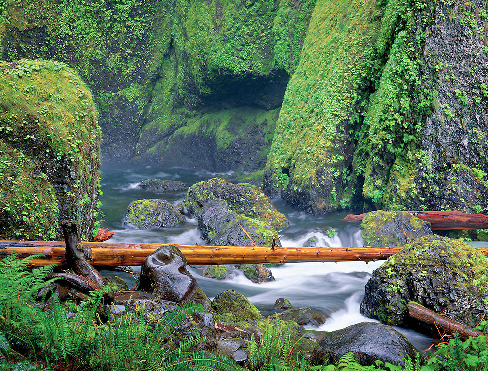 spring runoff at Wahclela Falls, Columbia Gorge National Scenic Area, Oregon
