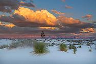USA; Southwest; New Mexico, Otero County, Alamogordo, White Sands National Monument