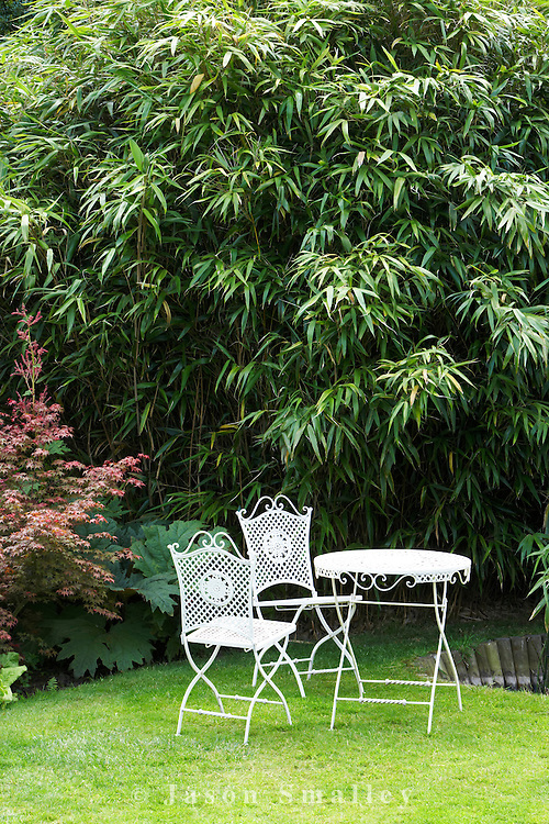 classical white garden furniture backed by bamboo. Cypress House. Dalton