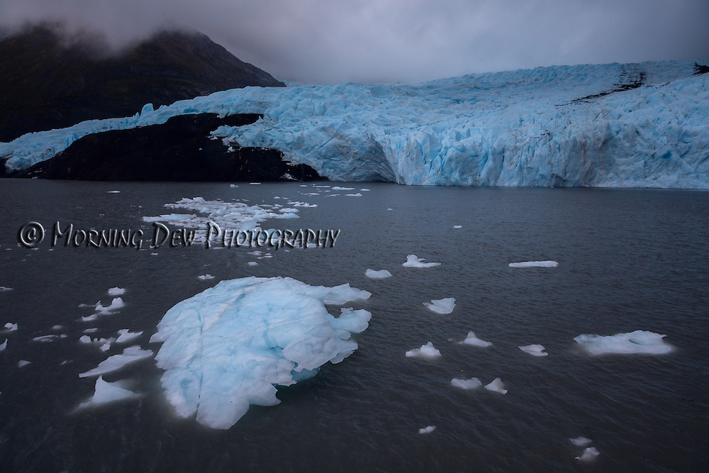 Ice burgs float away from the foot of Portage Glacier