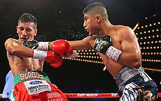 January 25, 2014: Mikey Garcia vs Juan Carlos Burgos