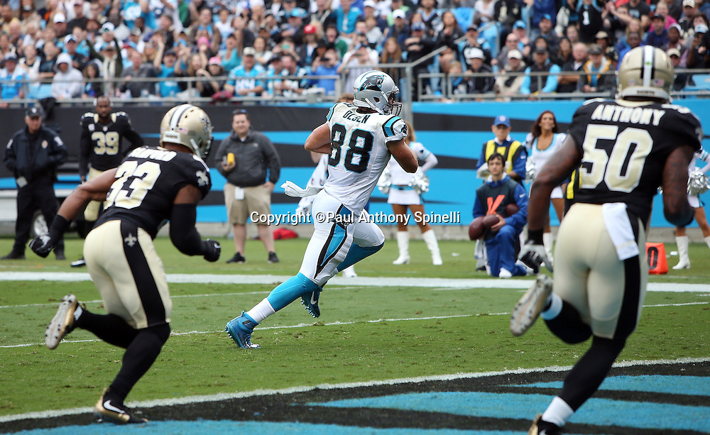 Carolina Panthers tight end Greg Olsen (88) scores a second quarter touchdown called back due to a penalty during the 2015 NFL week 3 regular season football game against the New Orleans Saints on Sunday, Sept. 27, 2015 in Charlotte, N.C. The Panthers won the game 27-22. (©Paul Anthony Spinelli)