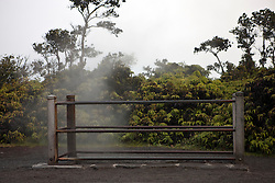 Steam vents, Hawaii Volcanoes National Park, The Big Island, Hawaii, United States of America