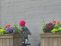 A woman with shocking pink hair walks through the outdoor seating at a Minneapolis restaurant in uptown.