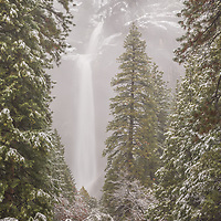 Lower Yosemite Falls in fog and snow. Yosemite National Park, CA
